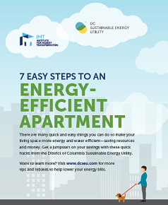 7 Easy Steps to an Energy-Efficient Apartment
