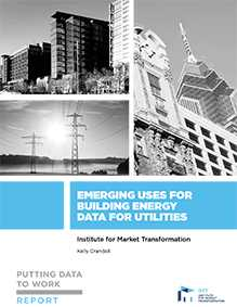 Putting Data to Work: Emerging Uses for Building Energy Data for Utilities